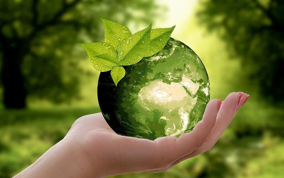 nature-recycle-Telefoneria-zirndorf-umwelt
